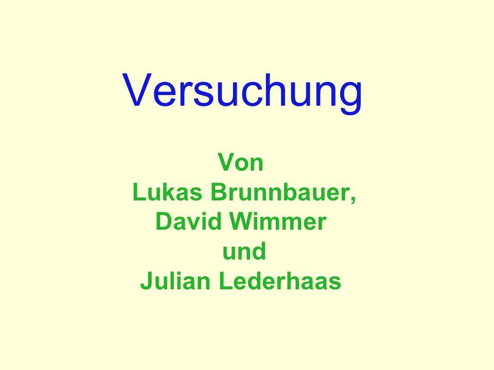 Versuchung Von Lukas Brunnbauer, David Wimmer und Julian Lederhaas