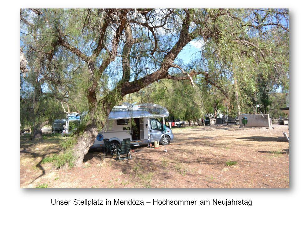 Unser Stellplatz in Mendoza – Hochsommer am Neujahrstag