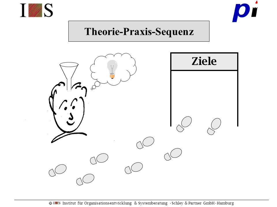 Institut für Organisationsentwicklung & Systemberatung Schley & Partner GmbHHamburg Theorie-Praxis-Sequenz Ziele