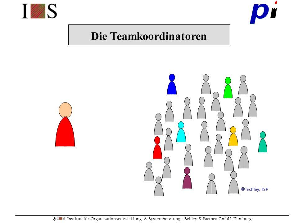 Institut für Organisationsentwicklung & Systemberatung Schley & Partner GmbHHamburg Fünf Merkmale: Ziele, Struktur, Dynamik, Umwelt, Wandel Lernende Organisation: The Dance of Change.