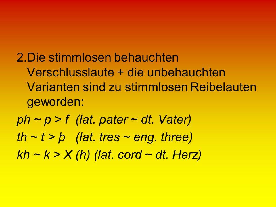 2.Die stimmlosen behauchten Verschlusslaute + die unbehauchten Varianten sind zu stimmlosen Reibelauten geworden: ph ~ p > f (lat. pater ~ dt. Vater)