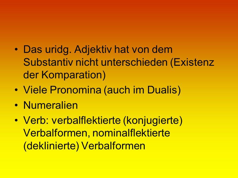 Das uridg. Adjektiv hat von dem Substantiv nicht unterschieden (Existenz der Komparation) Viele Pronomina (auch im Dualis) Numeralien Verb: verbalflek