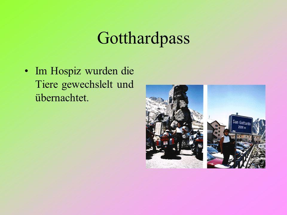 Gotthardpass Im Hospiz wurden die Tiere gewechslelt und übernachtet.