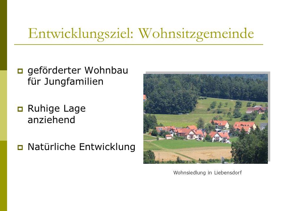Gewerbegrund Voll aufgeschlossener Gewerbegrund in Liebensdorf zu verkaufen! Ideale Lage Ca. 1,5 ha