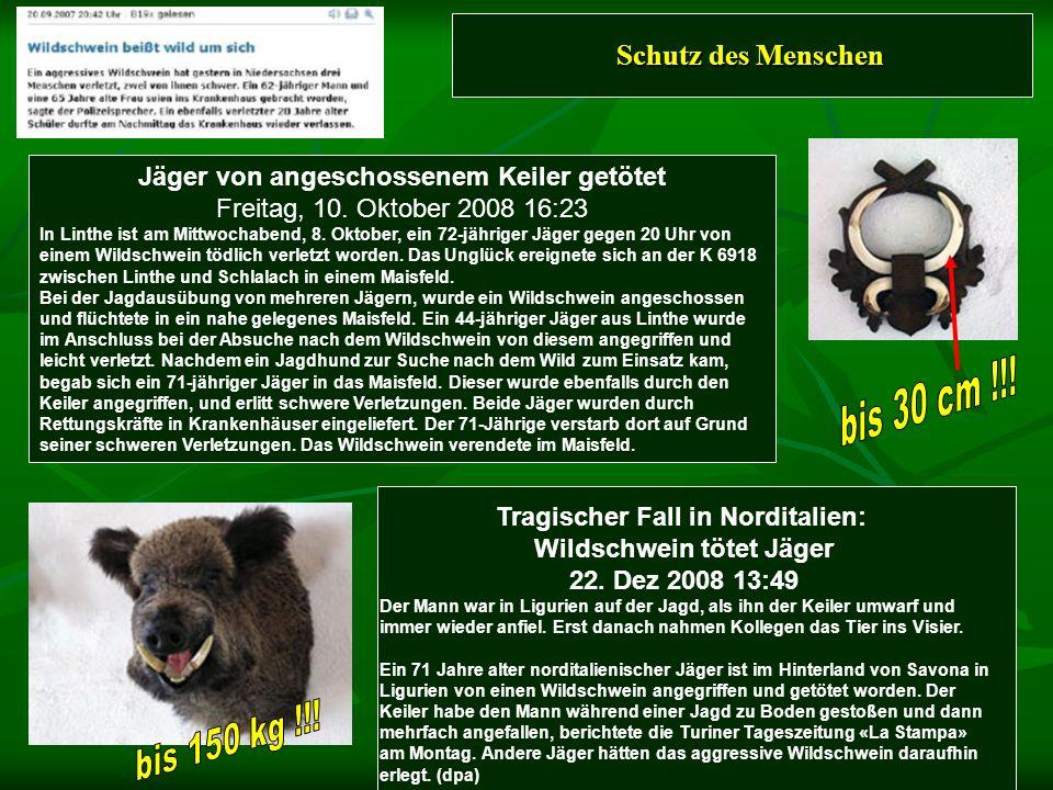 Schutz des Menschen Tragischer Fall in Norditalien: Wildschwein tötet Jäger 22. Dez 2008 13:49 Der Mann war in Ligurien auf der Jagd, als ihn der Keil