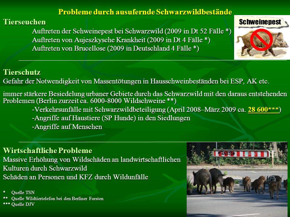 Tierseuchen Auftreten der Schweinepest bei Schwarzwild (2009 in Dt 52 Fälle *) Auftreten von Aujeszkysche Krankheit (2009 in Dt 4 Fälle *) Auftreten v