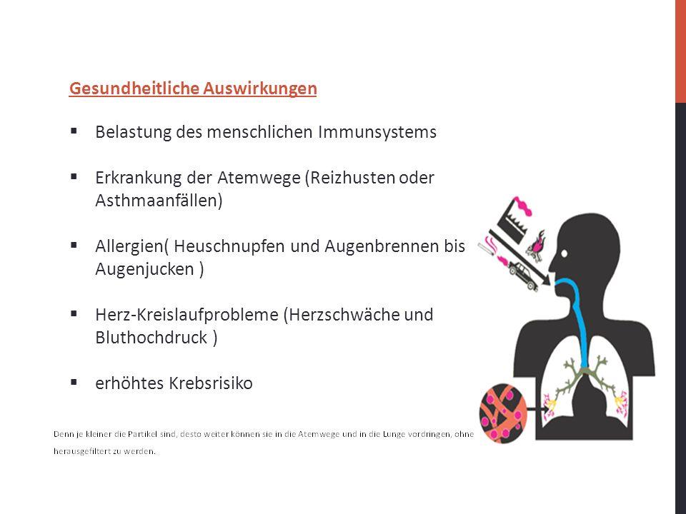 Gesundheitliche Auswirkungen Belastung des menschlichen Immunsystems Erkrankung der Atemwege (Reizhusten oder Asthmaanfällen) Allergien( Heuschnupfen
