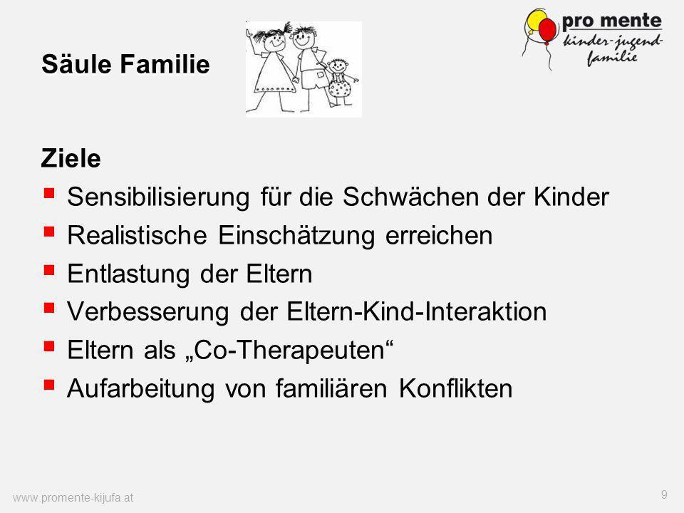 Säule Familie Ziele Sensibilisierung für die Schwächen der Kinder Realistische Einschätzung erreichen Entlastung der Eltern Verbesserung der Eltern-Ki