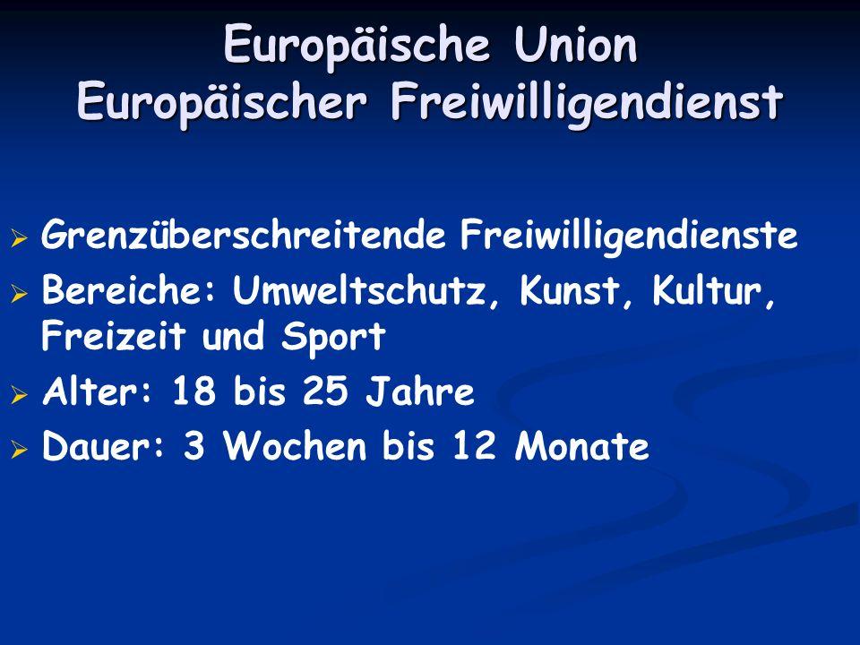 Europäische Union Europäischer Freiwilligendienst Grenzüberschreitende Freiwilligendienste Bereiche: Umweltschutz, Kunst, Kultur, Freizeit und Sport A