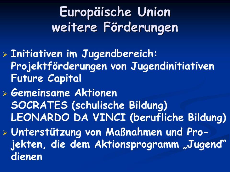 Europäische Union weitere Förderungen Initiativen im Jugendbereich: Projektförderungen von Jugendinitiativen Future Capital Gemeinsame Aktionen SOCRAT