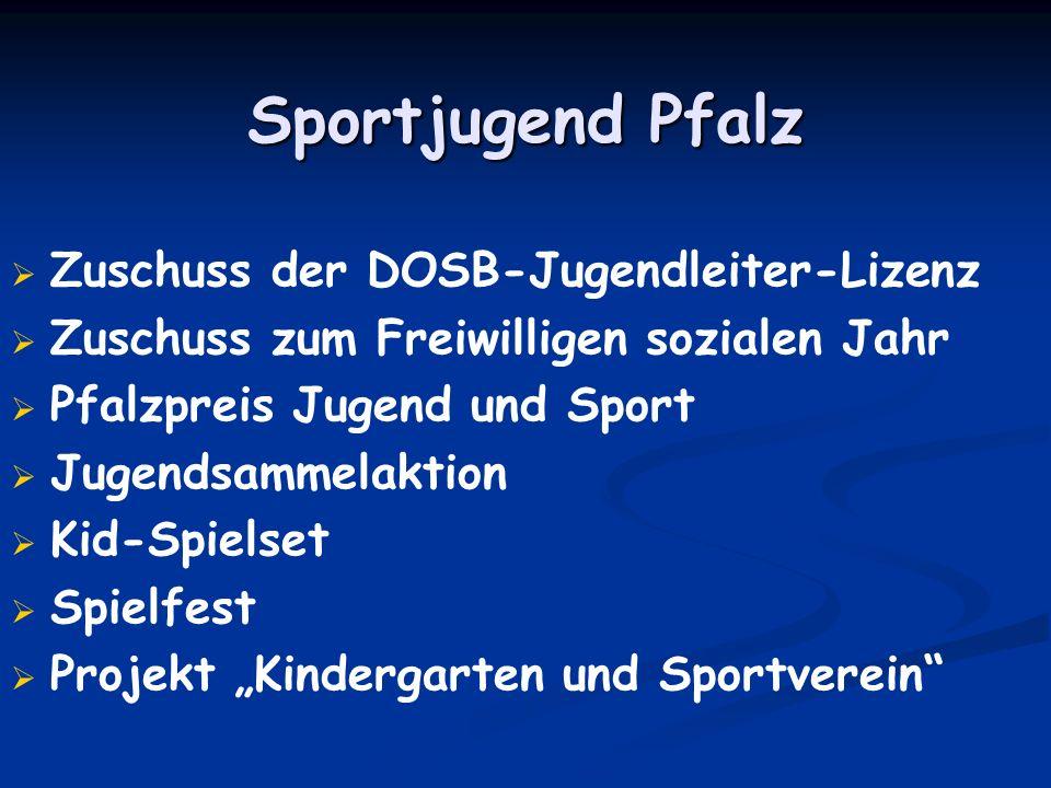 Sportjugend Pfalz Zuschuss der DOSB-Jugendleiter-Lizenz Zuschuss zum Freiwilligen sozialen Jahr Pfalzpreis Jugend und Sport Jugendsammelaktion Kid-Spi