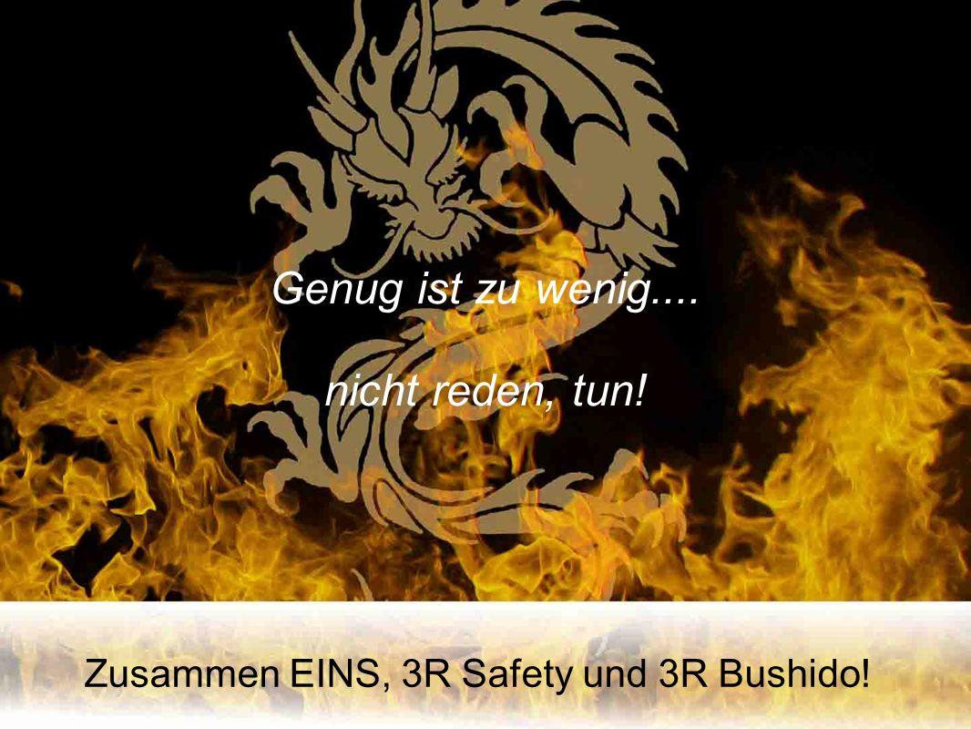 Zusammen EINS, 3R Safety und 3R Bushido! Genug ist zu wenig.... nicht reden, tun!