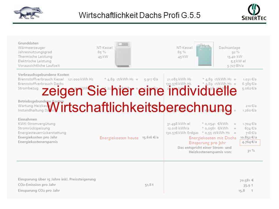Wirtschaftlichkeit Dachs Profi G.5.5 zeigen Sie hier eine individuelle Wirtschaftlichkeitsberechnung