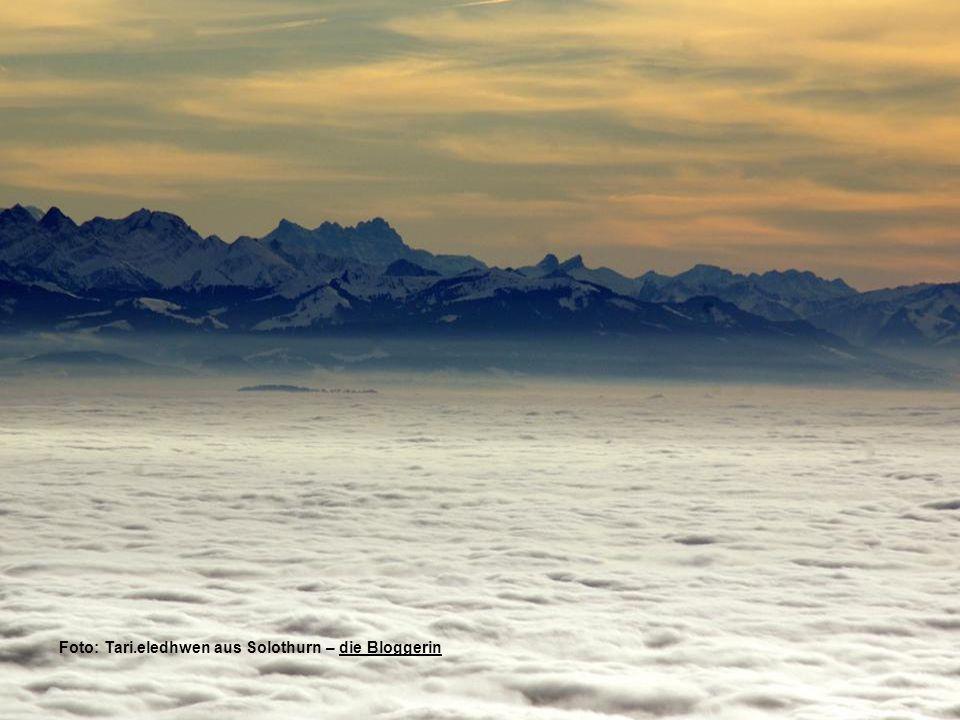 Foto: Tari.eledhwen aus Solothurn – die Bloggerindie Bloggerin