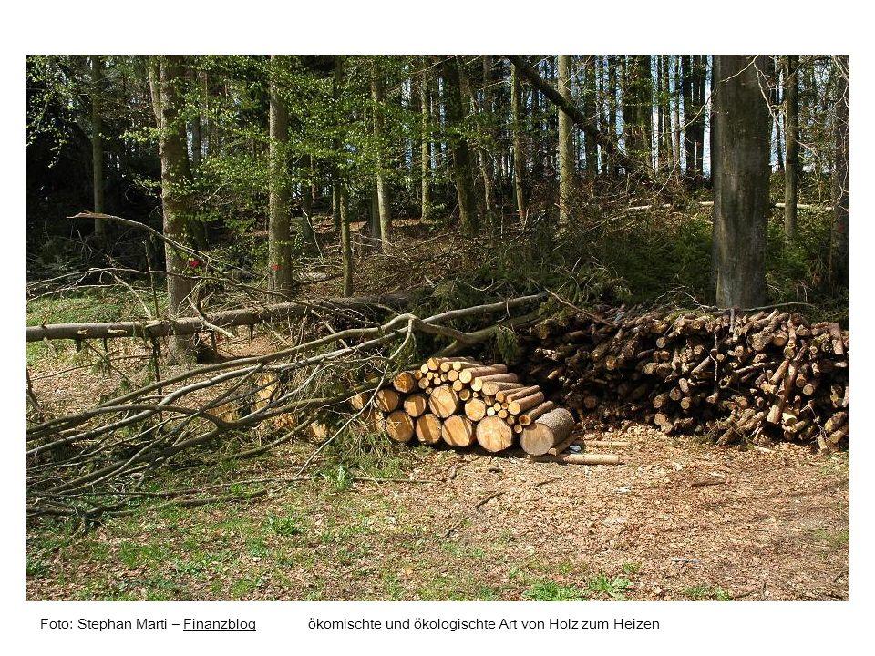 Foto: Stephan Marti – Finanzblog ökomischte und ökologischte Art von Holz zum HeizenFinanzblog