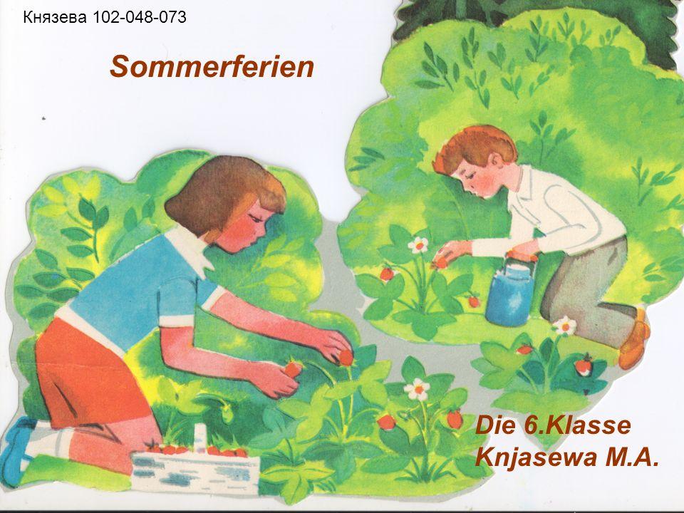 Sommerferien Die 6.Klasse Knjasewa M.A. Князева 102-048-073