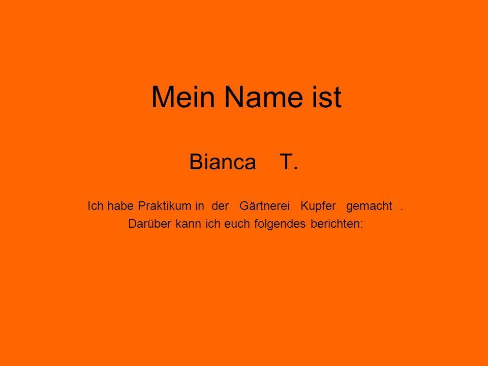 Mein Name ist Bianca T. Ich habe Praktikum in der Gärtnerei Kupfer gemacht. Darüber kann ich euch folgendes berichten: