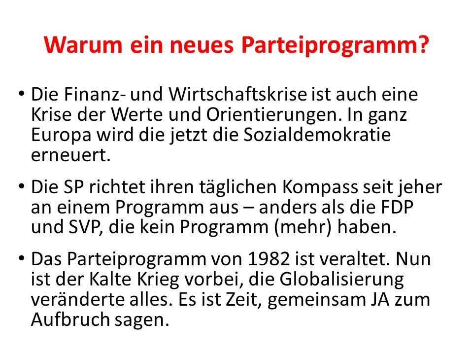 Warum ein neues Parteiprogramm? Die Finanz- und Wirtschaftskrise ist auch eine Krise der Werte und Orientierungen. In ganz Europa wird die jetzt die S
