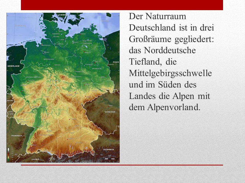 Der Naturraum Deutschland ist in drei Großräume gegliedert: das Norddeutsche Tiefland, die Mittelgebirgsschwelle und im Süden des Landes die Alpen mit dem Alpenvorland.