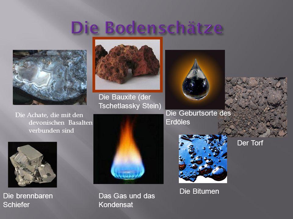 Die Achate, die mit den devonischen Basalten verbunden sind Die Bauxite (der Tschetlassky Stein) Die Geburtsorte des Erdöles Das Gas und das Kondensat Die brennbaren Schiefer Die Bitumen Der Torf