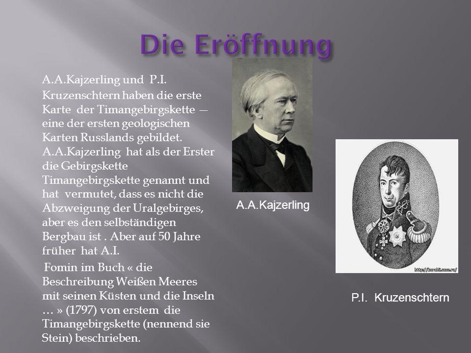 A.A.Kajzerling und P.I.