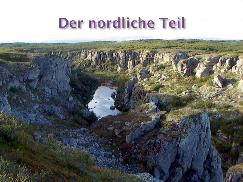 Der Nordteil ist vom Tal des Flusses der Pishma Mesenskaja beschränkt, besteht aus den nicht hohen Beeten des Kosminsky Stein, des Timansky Stein und anderer, die Höhe erreicht 303 m.