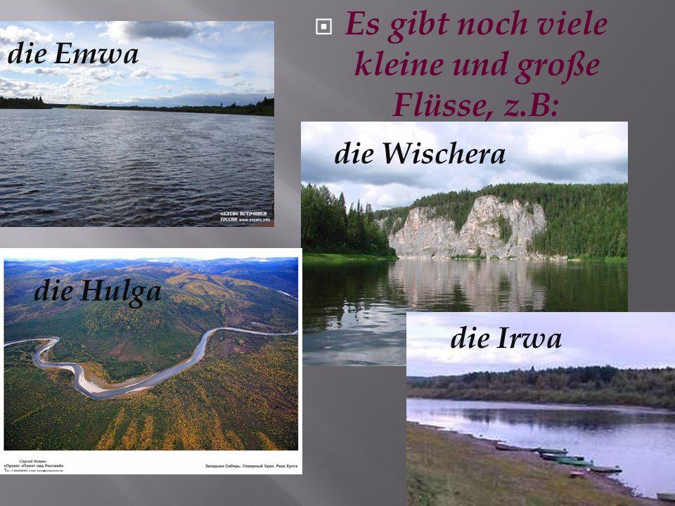 Für mich ist die Lusa der beste Fluss. Sie fließt parallel der Wytschegda.