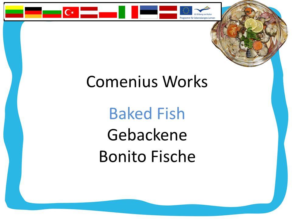 Comenius Works Baked Fish Gebackene Bonito Fische