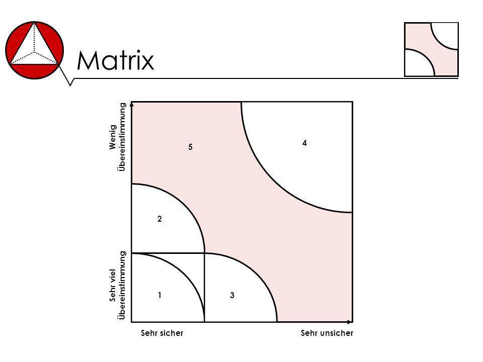Matrix Sehr sicherSehr unsicher Sehr viel Übereinstimmung Wenig Übereinstimmung 1 2 3 4 5