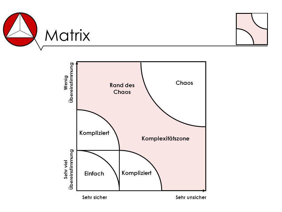 Matrix Sehr sicherSehr unsicher Sehr viel Übereinstimmung Wenig Übereinstimmung Einfach Kompliziert Chaos Rand des Chaos Komplexitätszone Kompliziert