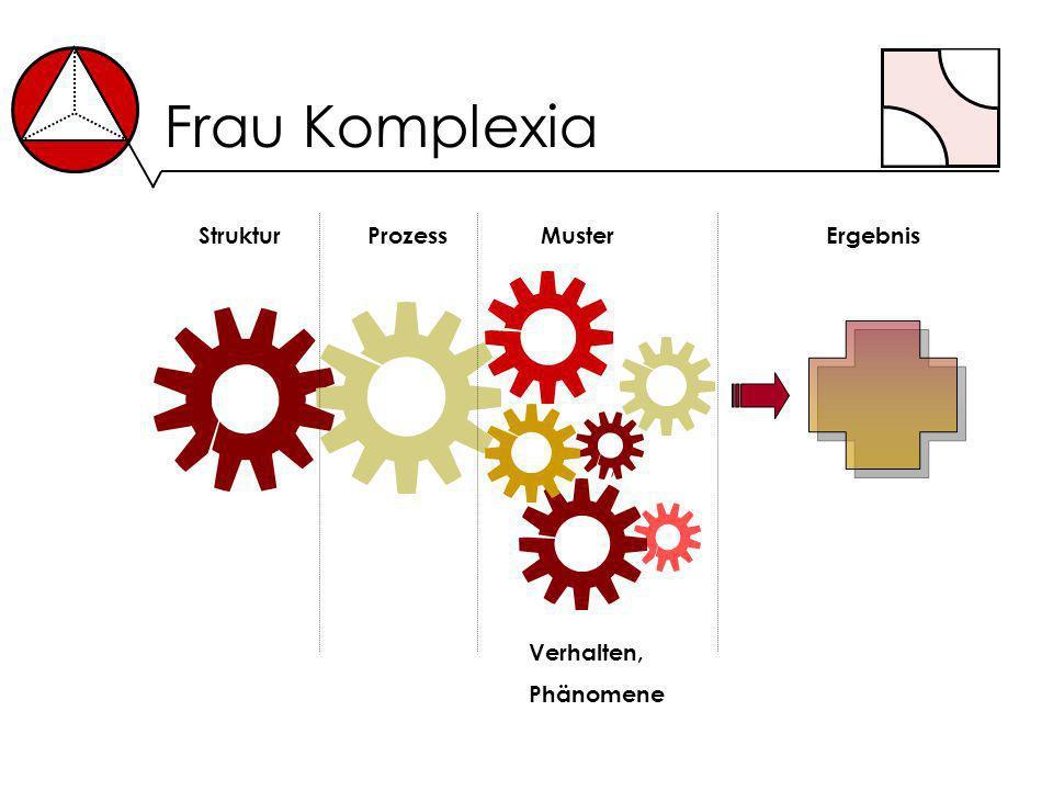Frau Komplexia StrukturProzessErgebnisMuster Verhalten, Phänomene