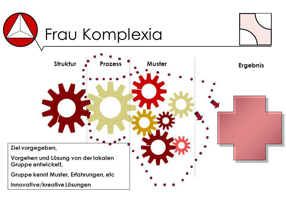 Frau Komplexia StrukturProzess Ergebnis Muster Ziel vorgegeben, Vorgehen und Lösung von der lokalen Gruppe entwickelt, Gruppe kennt Muster, Erfahrunge
