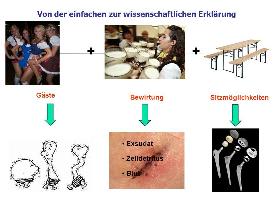 Von der einfachen zur wissenschaftlichen Erklärung Gäste Bewirtung Sitzmöglichkeiten ++ Exsudat Zelldetritus Blut