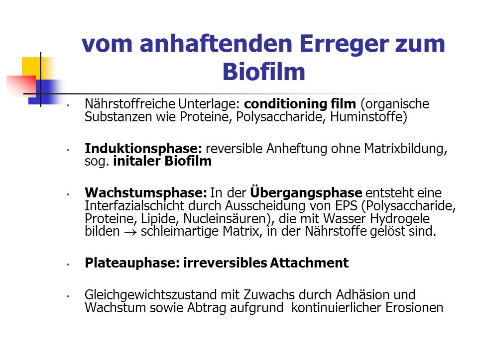 vom anhaftenden Erreger zum Biofilm Nährstoffreiche Unterlage: conditioning film (organische Substanzen wie Proteine, Polysaccharide, Huminstoffe) Ind