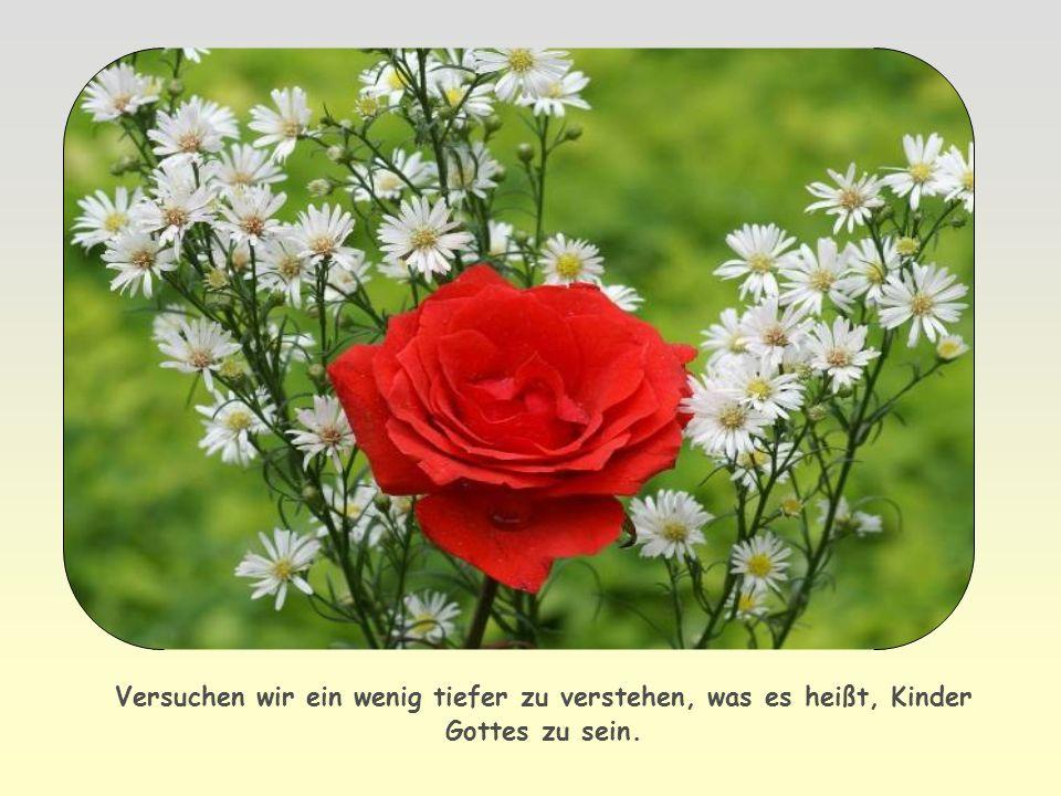allen, die im Glauben und in der Liebe Jesus Christus als Erlöser annehmen.