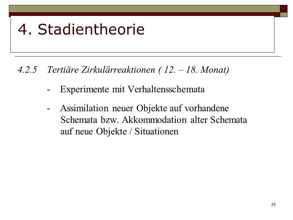 28 4.Stadientheorie 4.2.5Tertiäre Zirkulärreaktionen ( 12.