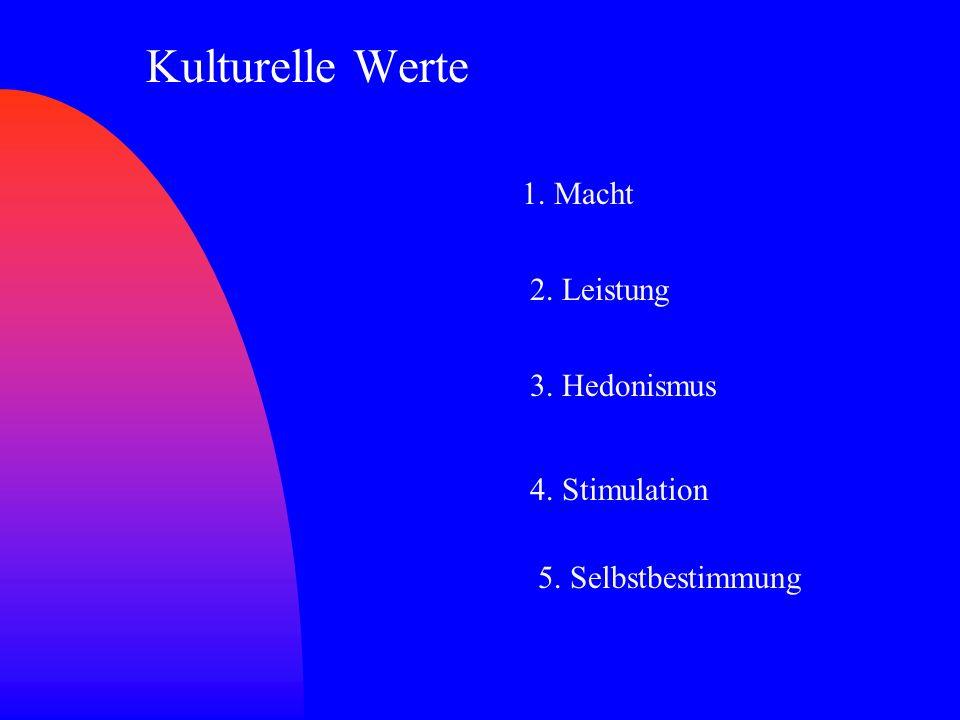Kulturelle Werte 1. Macht 2. Leistung 3. Hedonismus 4. Stimulation 5. Selbstbestimmung