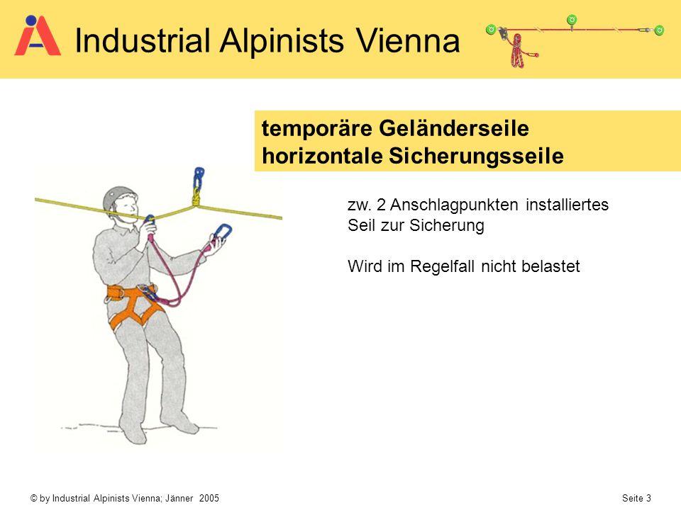 © by Industrial Alpinists Vienna; Jänner 2005 Seite 3 Industrial Alpinists Vienna temporäre Geländerseile horizontale Sicherungsseile zw. 2 Anschlagpu