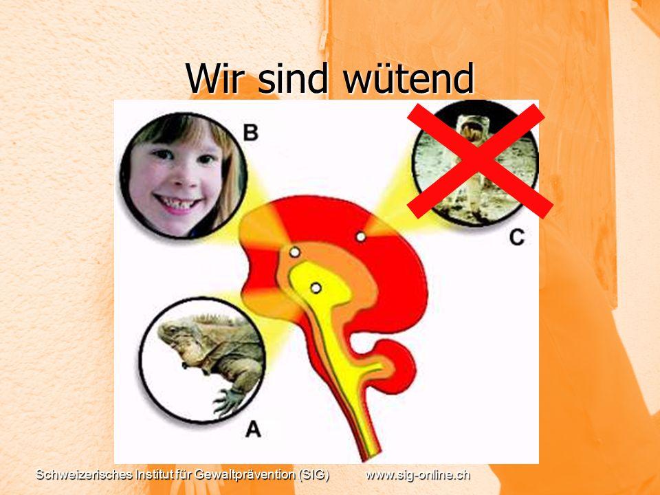 Wir sind wütend Schweizerisches Institut für Gewaltprävention (SIG)www.sig-online.ch