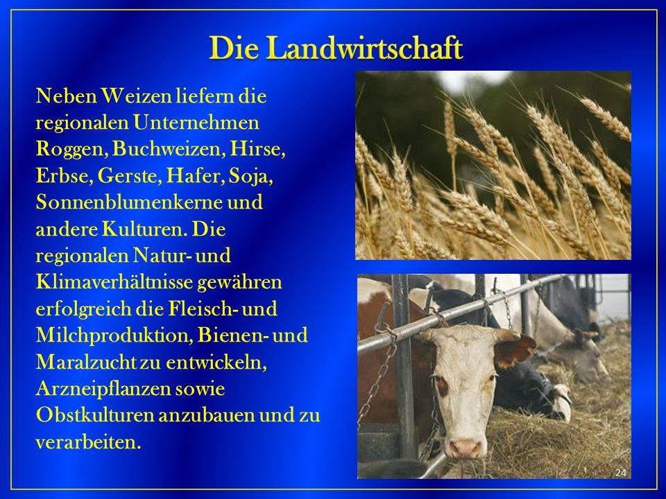Neben Weizen liefern die regionalen Unternehmen Roggen, Buchweizen, Hirse, Erbse, Gerste, Hafer, Soja, Sonnenblumenkerne und andere Kulturen. Die regi