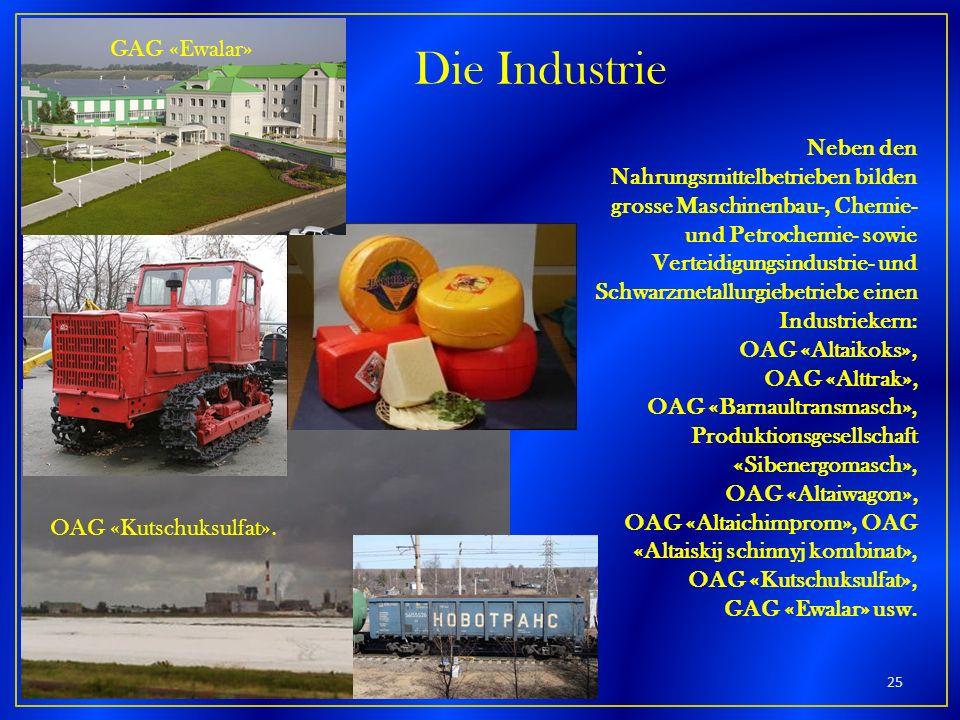 Neben den Nahrungsmittelbetrieben bilden grosse Maschinenbau-, Chemie- und Petrochemie- sowie Verteidigungsindustrie- und Schwarzmetallurgiebetriebe e