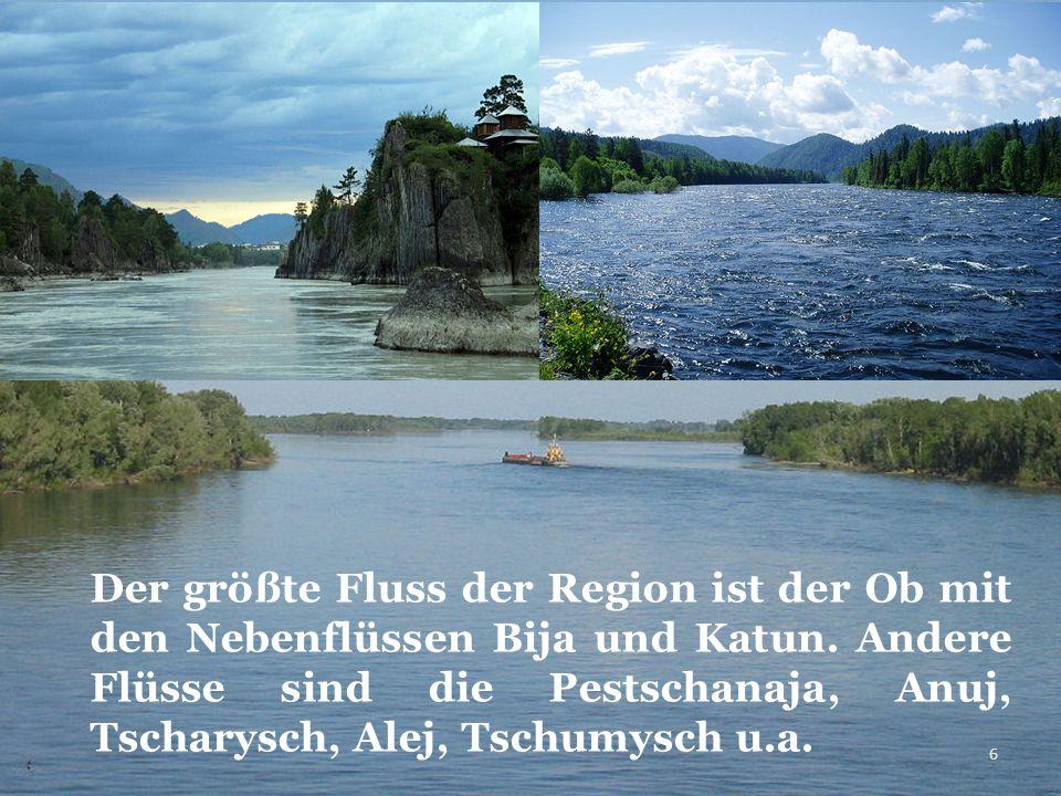 Der größte Fluss der Region ist der Ob mit den Nebenflüssen Bija und Katun. Andere Flüsse sind die Pestschanaja, Anuj, Tscharysch, Alej, Tschumysch u.