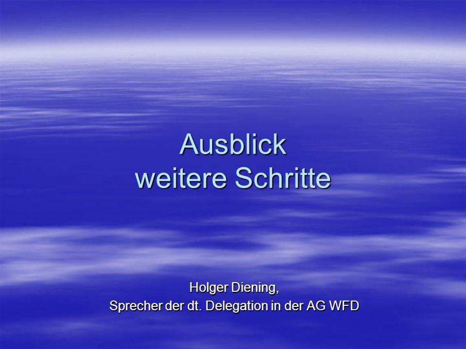 Ausblick weitere Schritte Holger Diening, Sprecher der dt. Delegation in der AG WFD