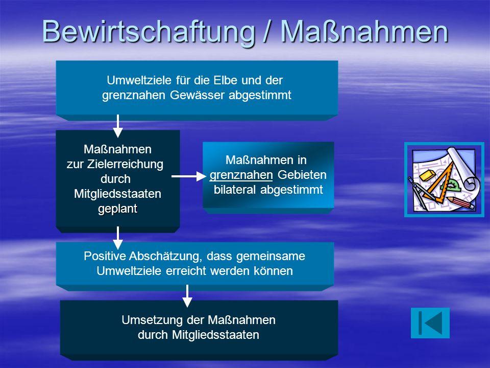 Bewirtschaftung / Maßnahmen Umweltziele für die Elbe und der grenznahen Gewässer abgestimmt Maßnahmen in grenznahen Gebieten bilateral abgestimmt Maßn