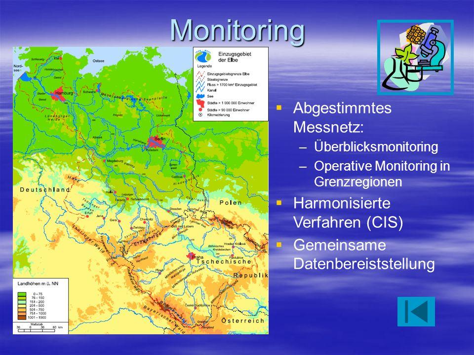 Monitoring Abgestimmtes Messnetz: –Überblicksmonitoring –Operative Monitoring in Grenzregionen Harmonisierte Verfahren (CIS) Gemeinsame Datenbereistst