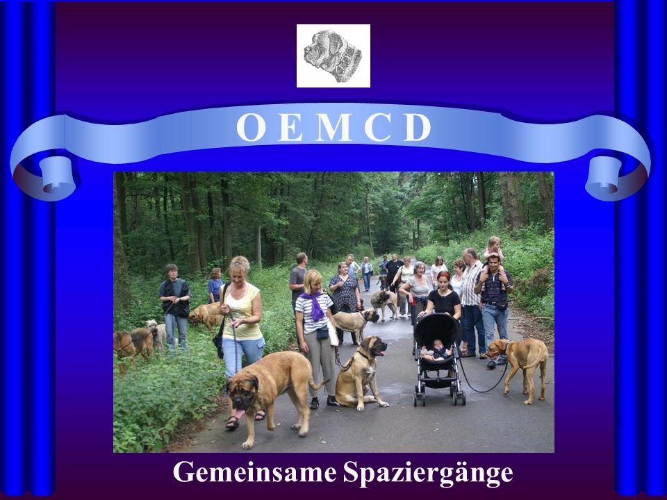 O E M C D Gemeinsame Spaziergänge