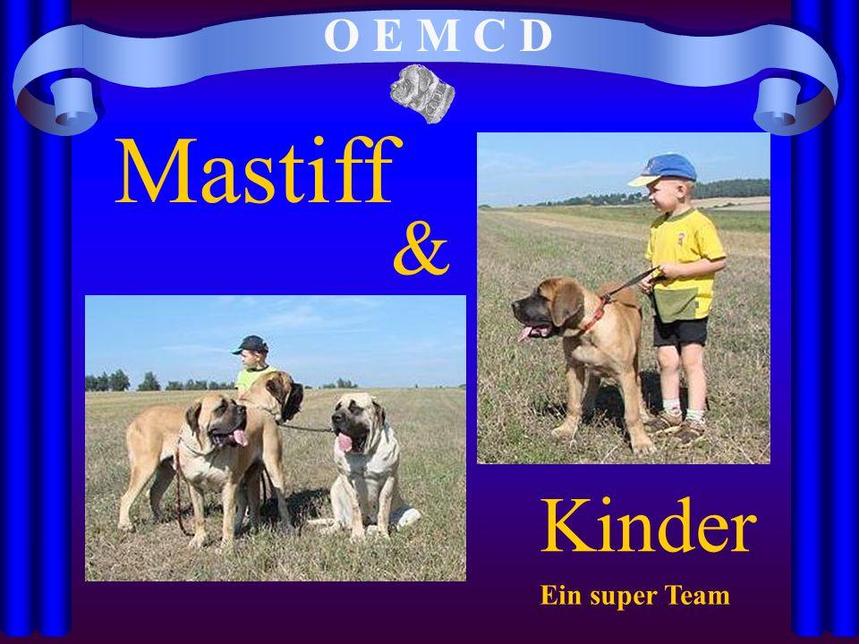 O E M C D Mastiff & Kinder Ein super Team
