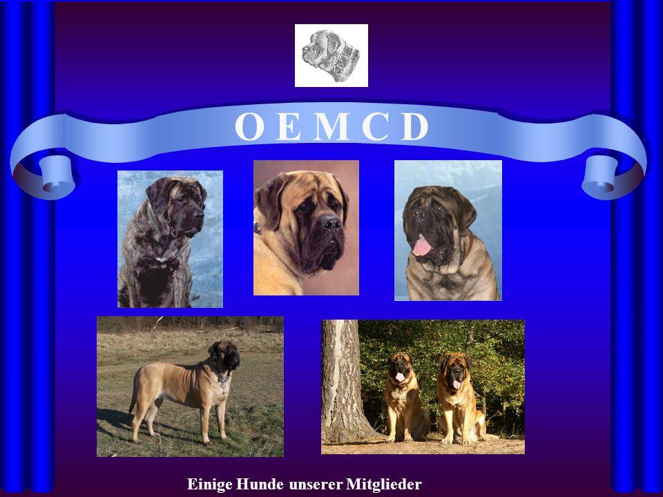 O E M C D Einige Hunde unserer Mitglieder