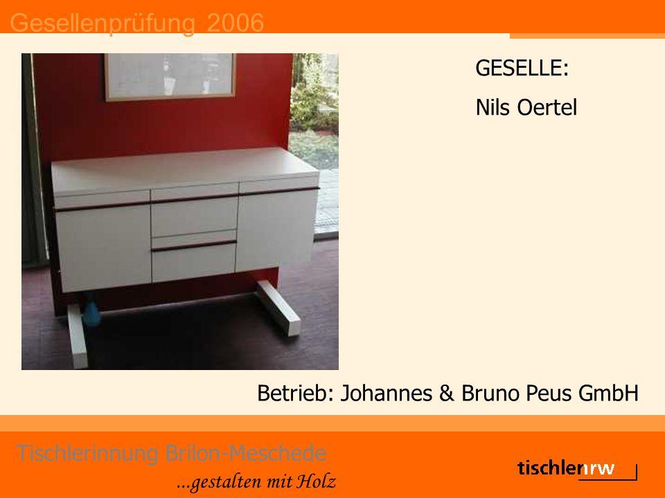Gesellenprüfung 2006 Tischlerinnung Brilon-Meschede...gestalten mit Holz Betrieb: Johannes & Bruno Peus GmbH GESELLE: Nils Oertel