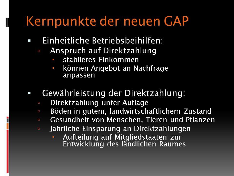 Kernpunkte der neuen GAP Einheitliche Betriebsbeihilfen: Anspruch auf Direktzahlung stabileres Einkommen können Angebot an Nachfrage anpassen Gewährle